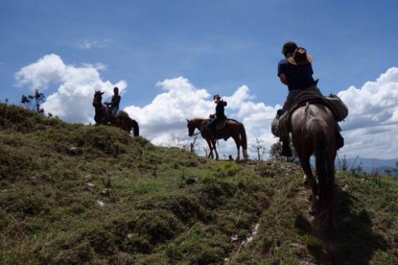 Te paard!
