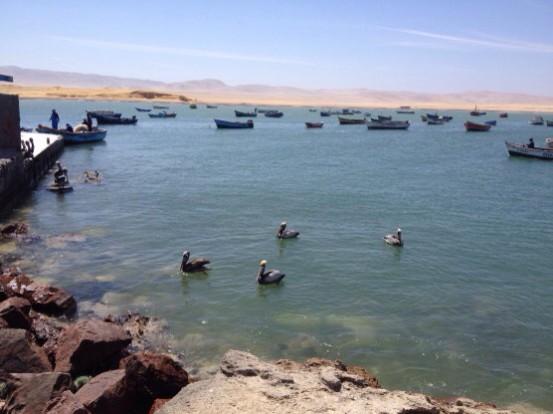 Langs de kust van Zuid Peru